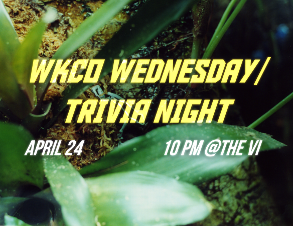 Trivia this Wednesday at the VI!
