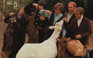 2533_the_beach_boys